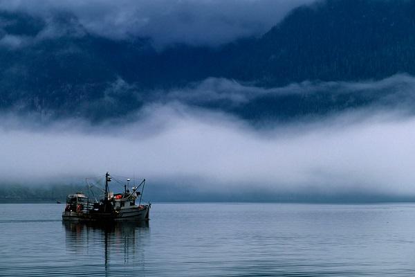24 Pescadores Historia 2