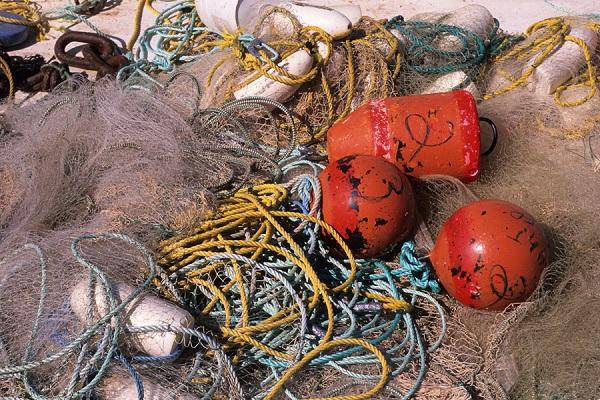 24 Pescadores Historia 3