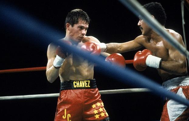 12 Mejores Boxeadores 2