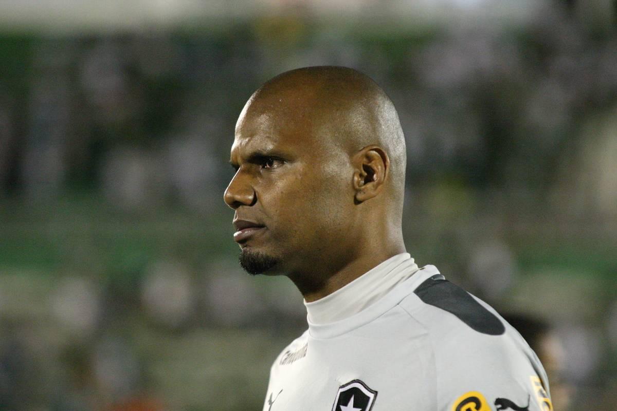 Chapecoense v Botafogo - Brasileirao Series A 2014
