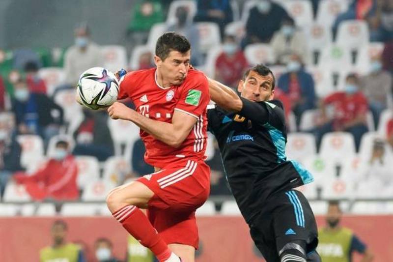 5 Tigres Bayern 6